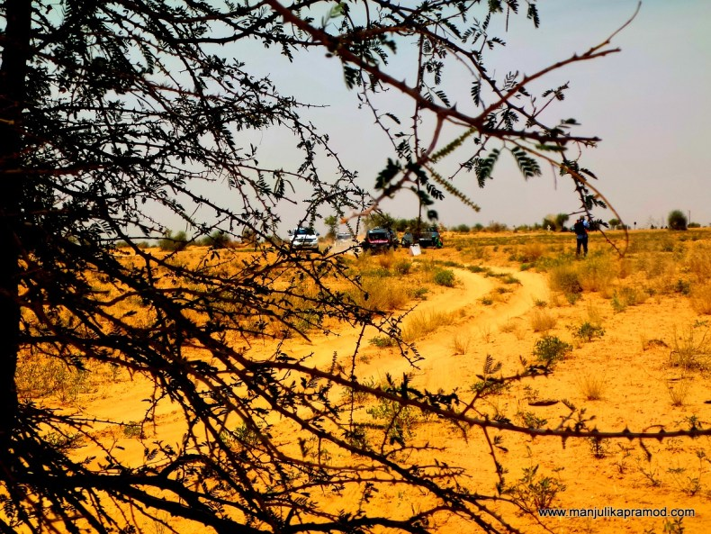 Maruti Suzuki, Car Rally, Desert Storm, Experience, Blogger, Travel