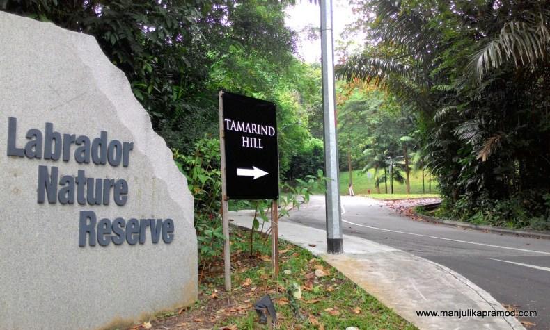 Labrador Nature Reserve, Tamarind Hill, Singapore, Green Parks