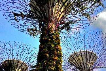 Singapore, 2016, Travel, Stories, Travel blogger