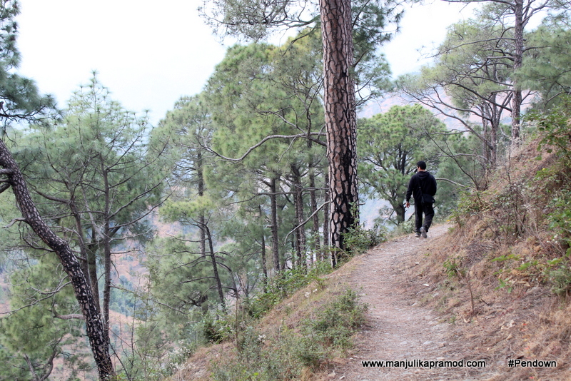 Things to do in Shoghi