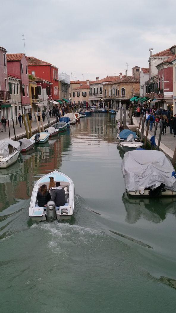 Venice Canal ride
