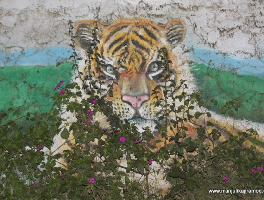 I Was Elated To Find These Murals in Periyar Jungle, Thekkady