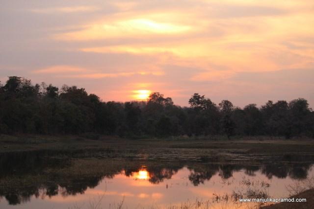 Kohka Lake, Wilderness camp, wildlife, Pench