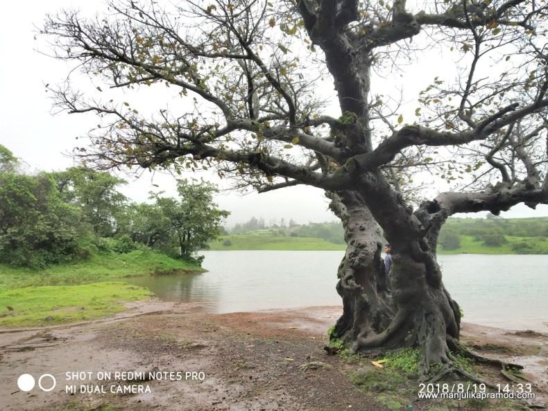 Tranquil Tungarli Lake