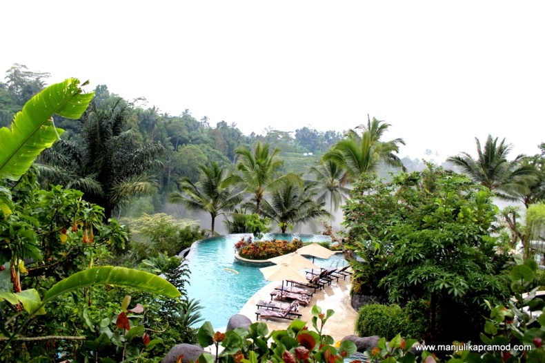 Hike in the jungles in Bali