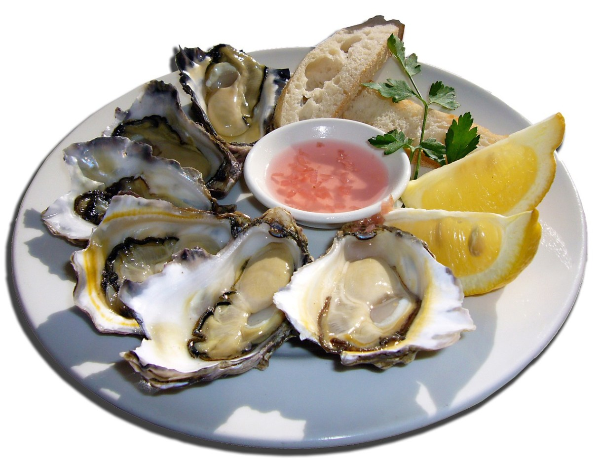 Fresh oysters in Portugal