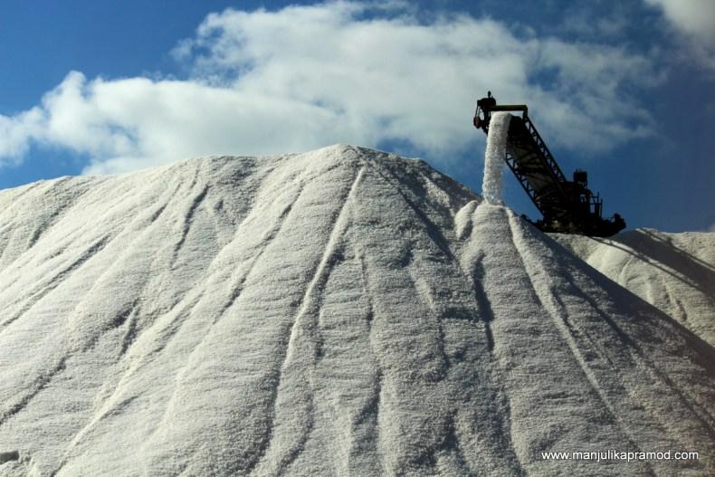 Salt is white gold