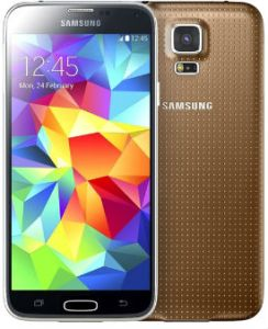 S5 Gold