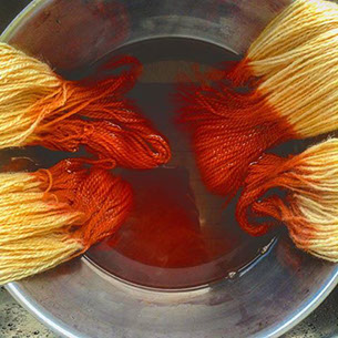 Image result for dyeing with madder root