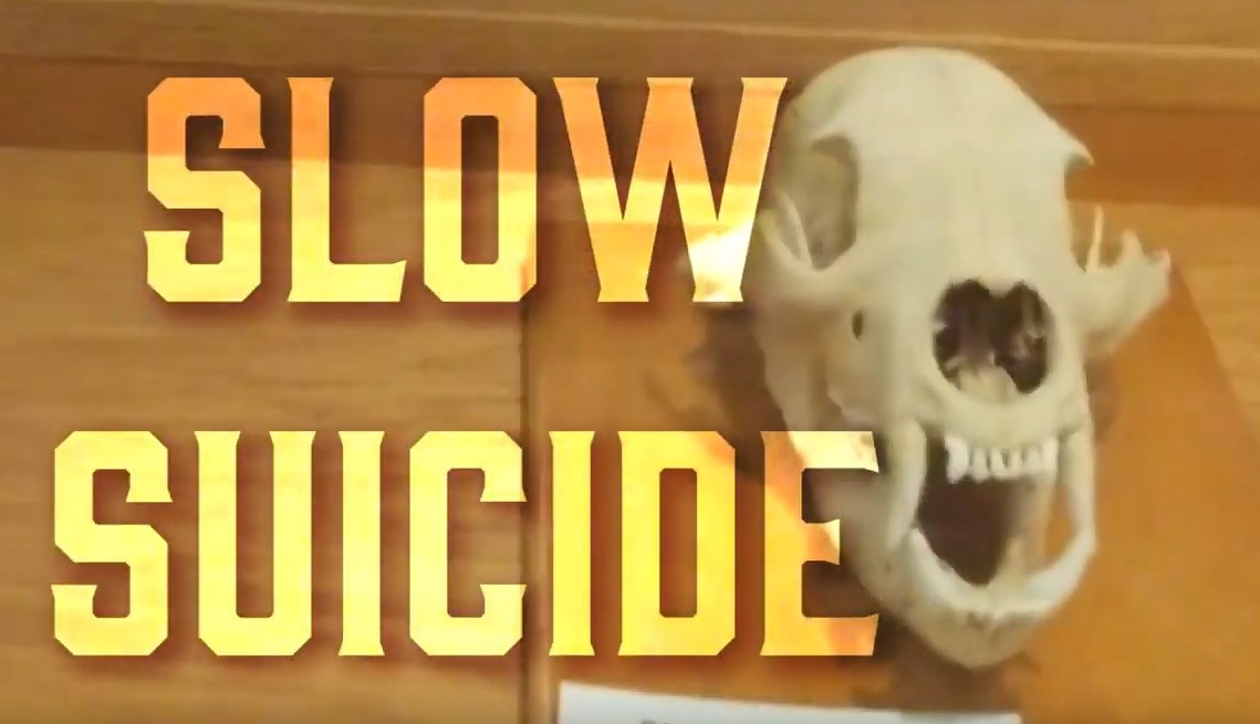 Slow Suicide - Personal Development For Men at Manlihood