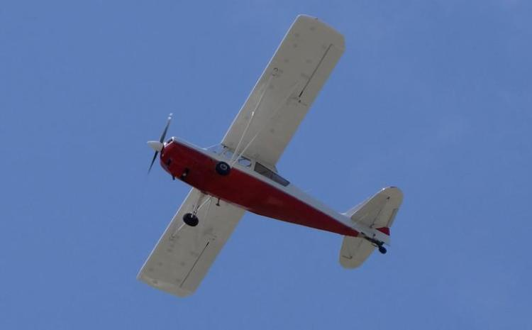 Why Taree Aviation Park didn't fly