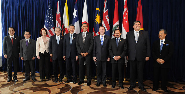 What is the TPP and how it affects us