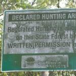 Hunting on a main thoroughfare?