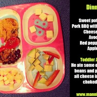 4 Easy Toddler Dinners from Trader Joes