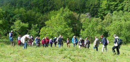 Groupe de botanistes à La Gabertie