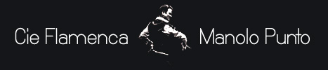 Manolo Punto Flamenco