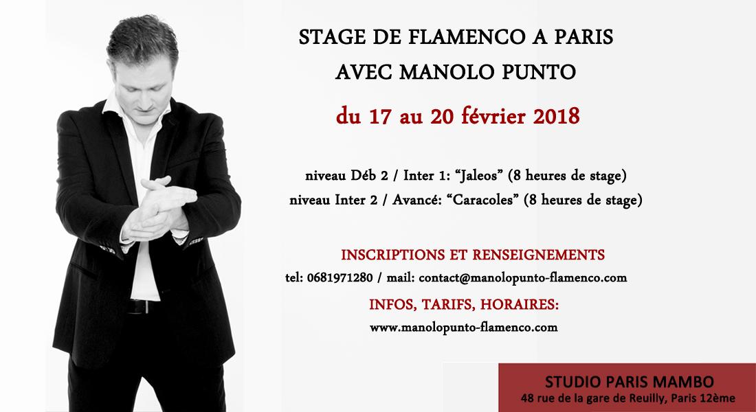 stage flamenco paris manolo punto