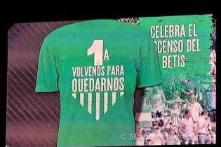 Afición celebrando el ascenso del Betis