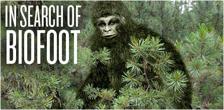 Biofoot