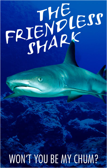The Friendless Shark