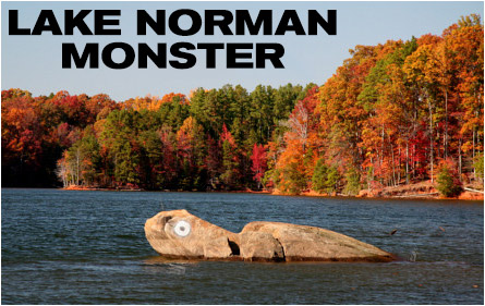 Lake Norman Monsters