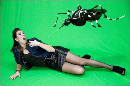 Mosquitoid