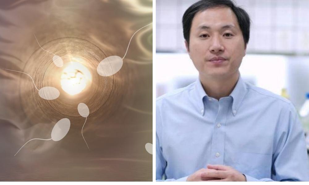Harvard Researchers To Begin Gene-Editing Sperm Amidst CRISPR Feud