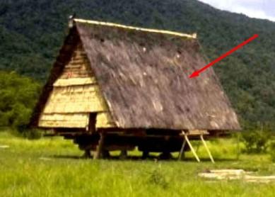 4 Keunikan Rumah Adat Tradisional Tambi Sulawesi Tengah yang Jarang Orang Tahu