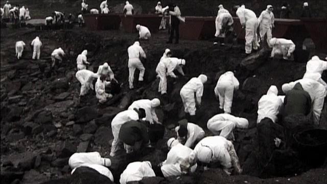 Voluntarios limpiando la costa gallega