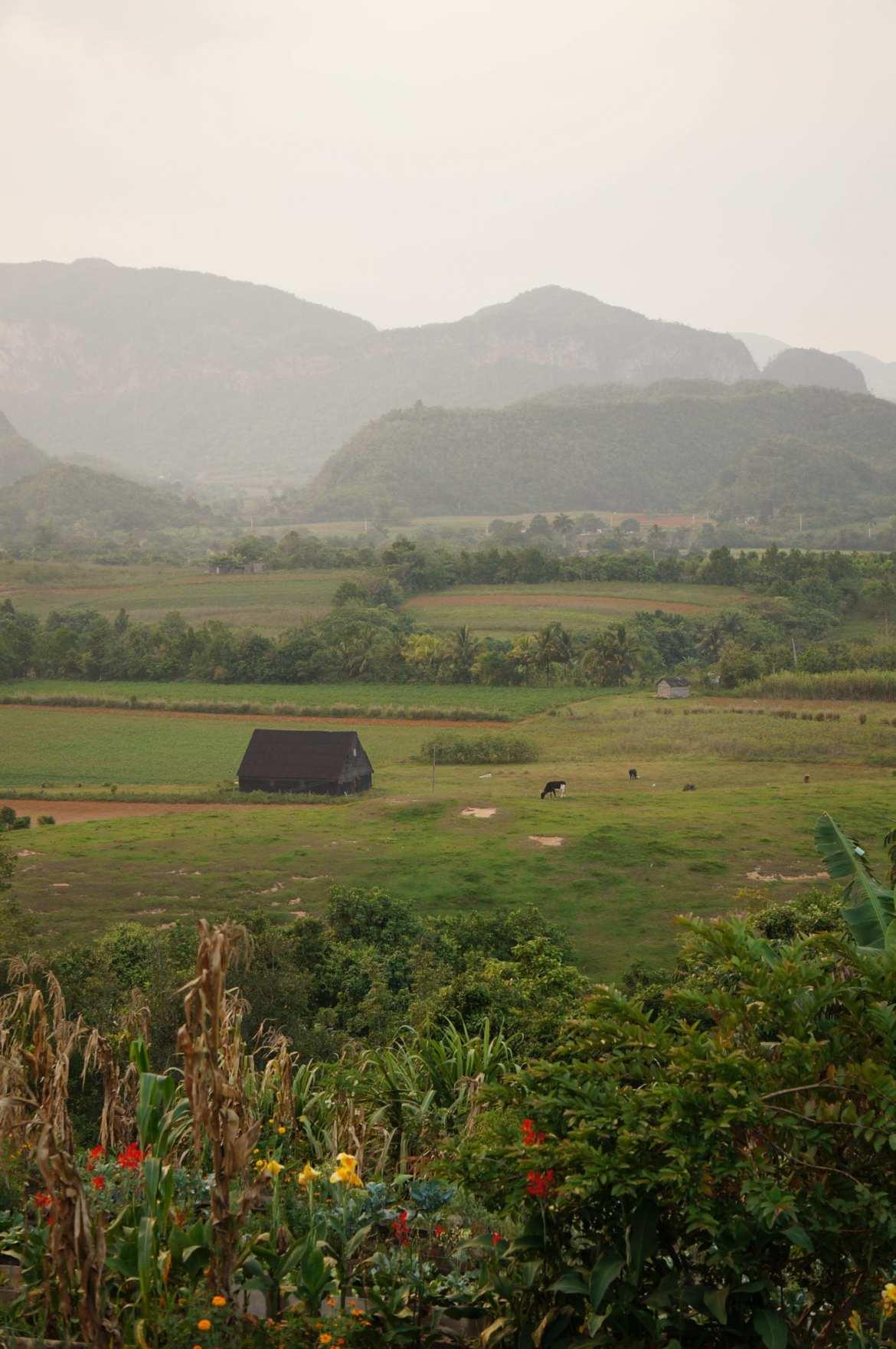 view from La Finca Agroecologica El Paraiso, vinales