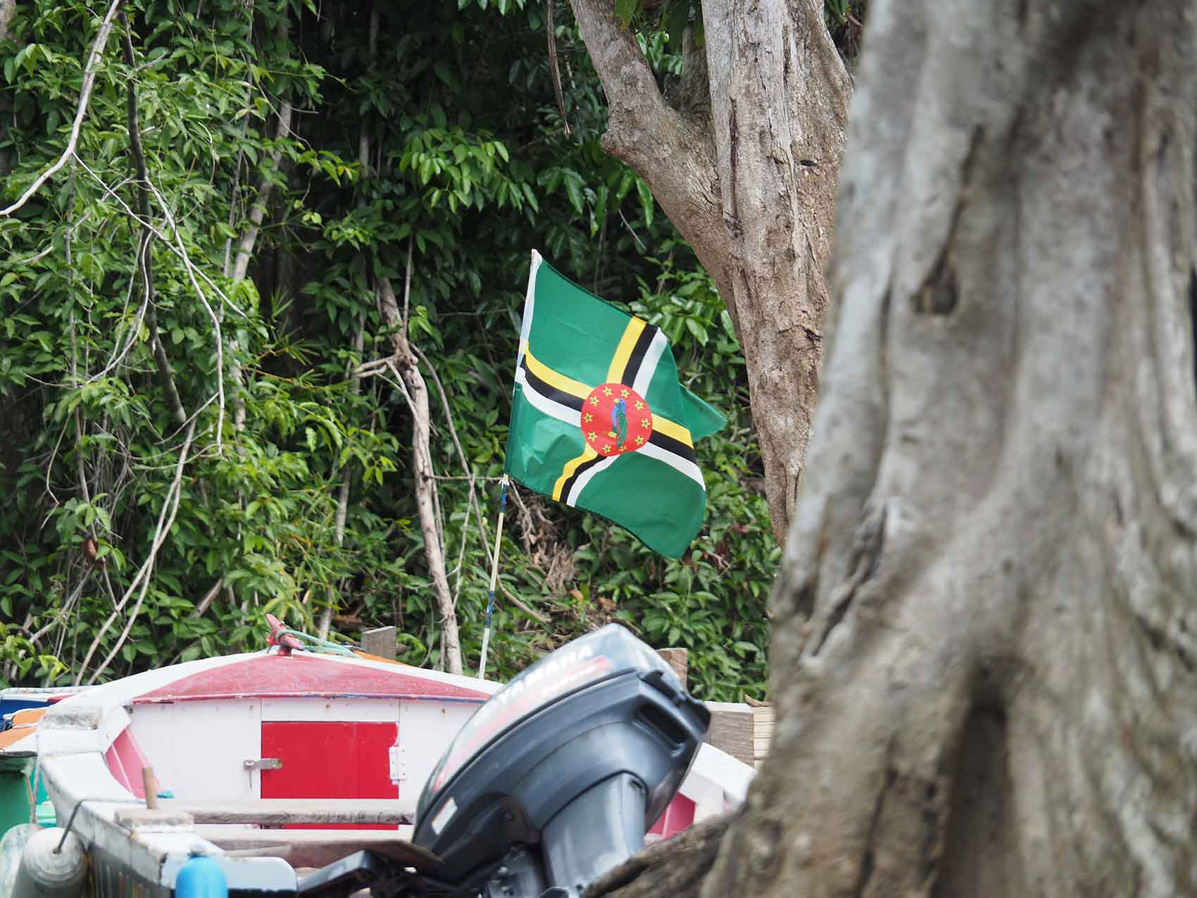 Pavillon de la Dominique sur une barque locale sur la Rivière Indienne.