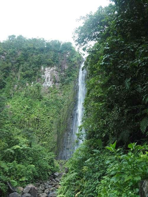 La 2ème chute du Carbet à travers la végétation, en Guadeloupe sur Basse-Terre.