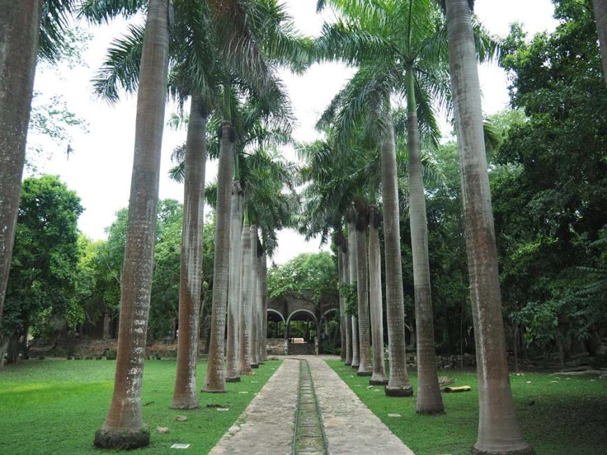 Parc de l'hacienda San Pedro Ochil.