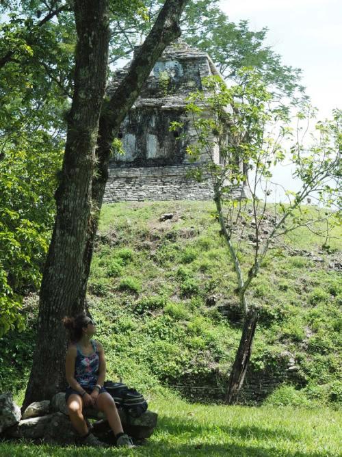 Repos sous un arbre dans les ruines mayas de Palenque, au Mexique.