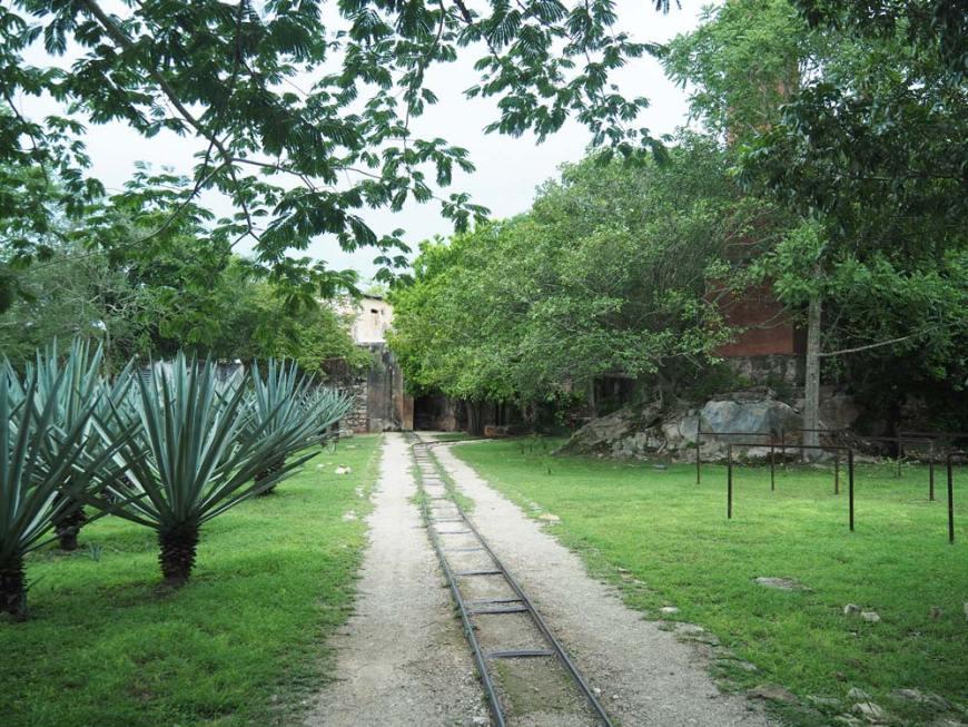 Rail pour transporter l'henequen, à l'hacienda San Pedro Ochil, au Mexique.