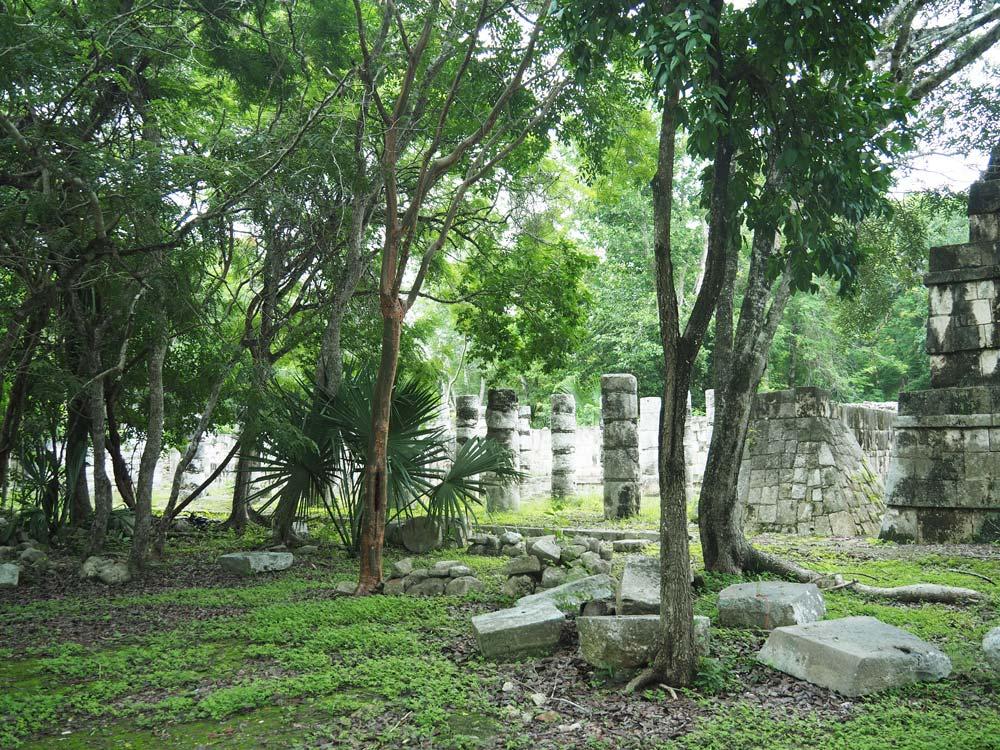 Ruines mayas perdues dans la jungle sur le site de Chichén Itza.