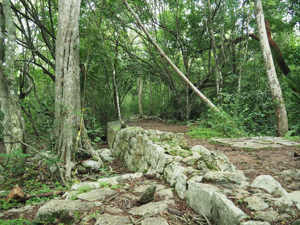 Sentier ombragé utilisé par les anciens Mayas.