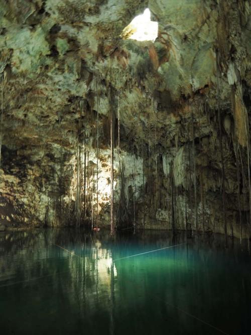 La belle lumière verte du cénote X'Kekén non loin de Valladolid, au Mexique.