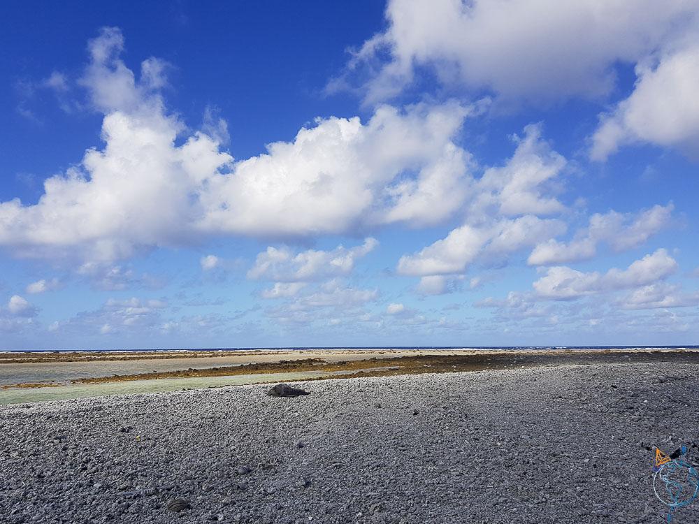 Une étendue à perte de vue de coraux brisés pour rejoindre la barrière et l'océan.