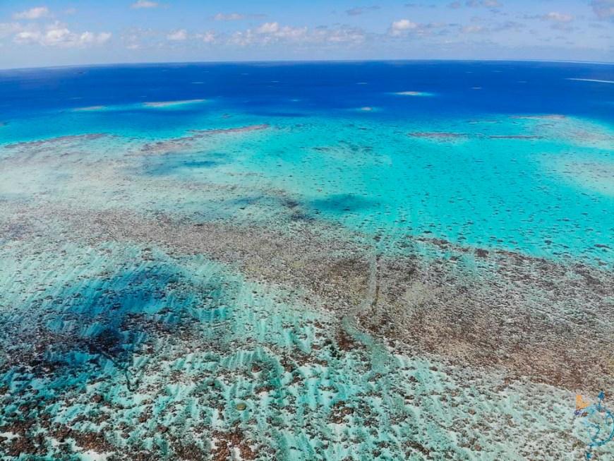 Le platier de corail de l'Anse Amyot vu du drone.