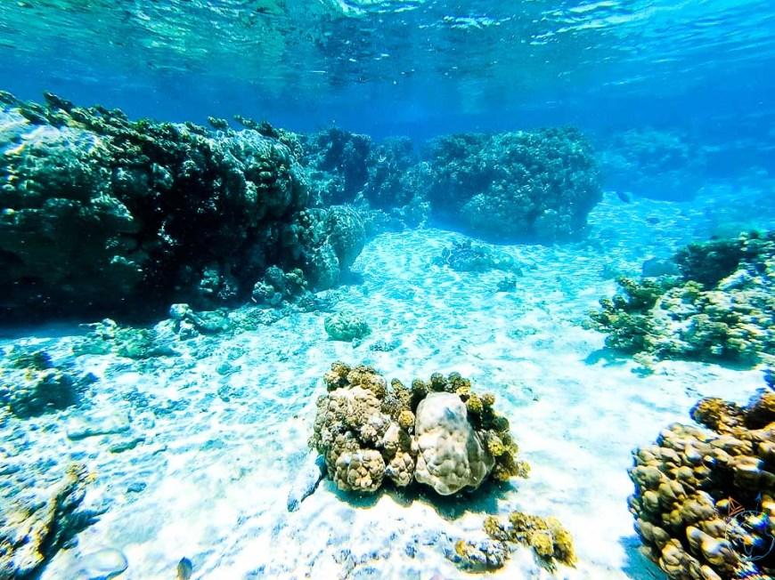 Fonds sous-marins sur le spot de snorkeling du motu Tautau à Taha'a.