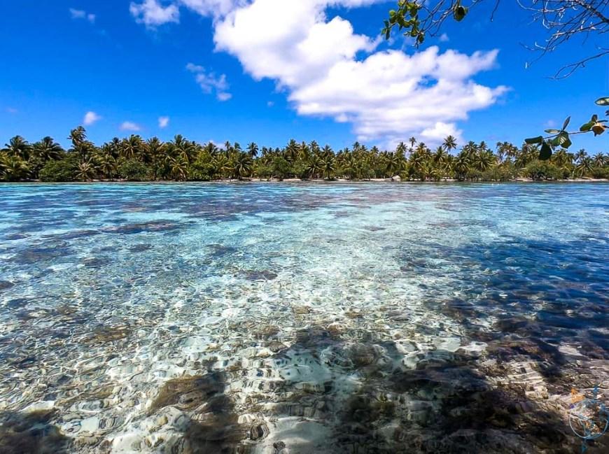 Spot de snorkeling du motu Tautau.