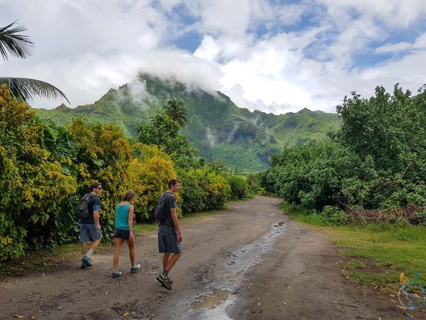 Chemin qui mène aux cascades d'Afareitu sur Moorea.