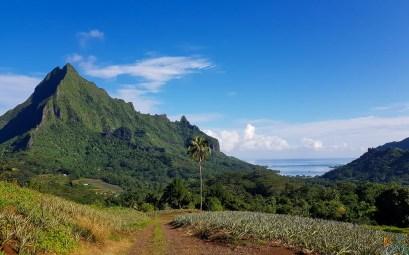 Mont Rotui avec vue sur la baie de Cook.