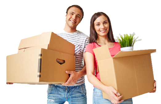 trade-me collection freight furniture movers