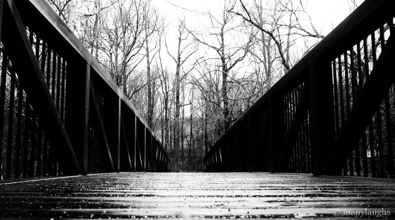 The bridge: low angle