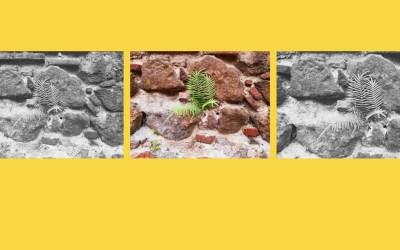 A oração de Neemias: o primeiro passo na reconstrução da proteção