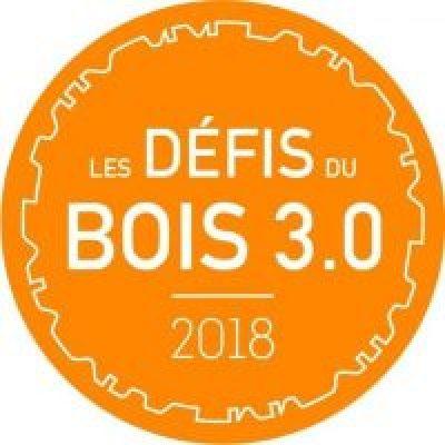 Expérimentation de 4D interactive aux Défis du Bois 3.0