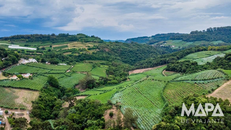 Vale dos Vinhedos Serra Gaúcha