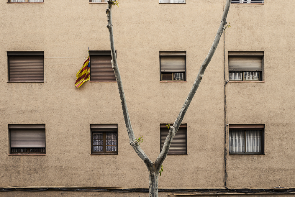 Catalonia's flag on a window.